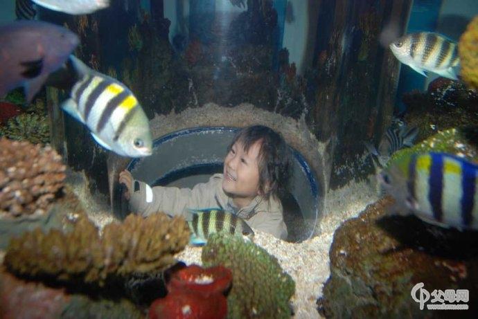 海底 海底世界