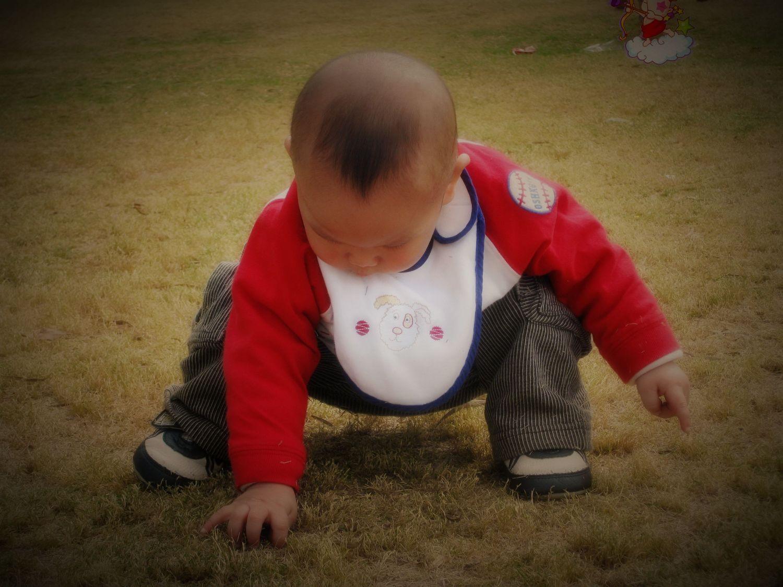 【可爱宝宝发型秀】の孙浩宇的小毛毛