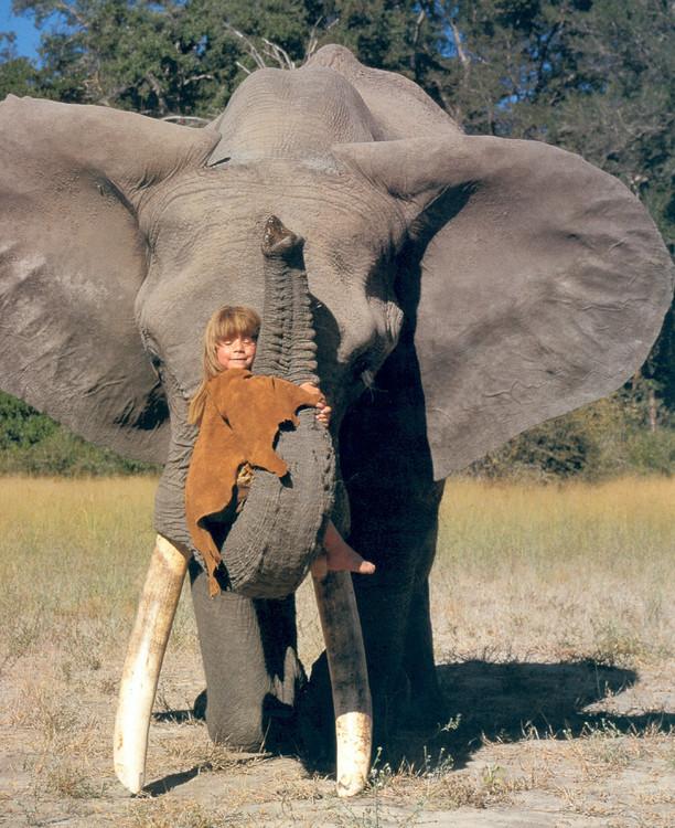 【读书推荐】tippi  我的野生动物朋友们>>震撼人心