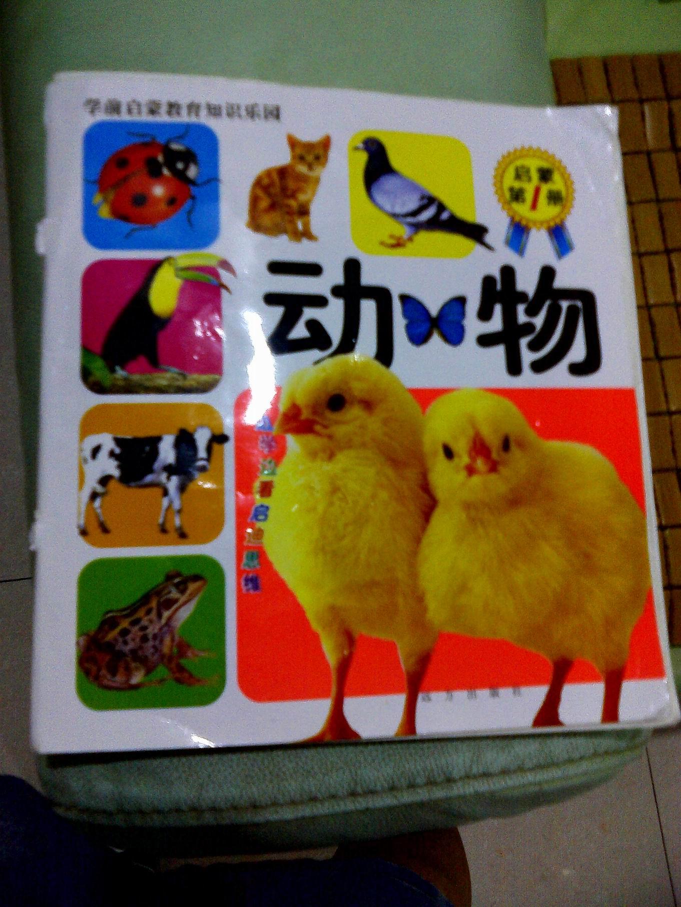 《动物》和故事书《好孩子朋友多》   小旎对小动物特别感兴趣,动物书